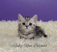 Ruby-Rem